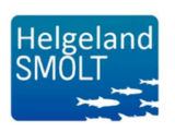 Helgeland Smolt