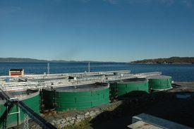 Njordsalmon sitt anlegg på Tjeldbergodden. Selskapet er kommet lengst på produksjon av postsmolt i Norge. Nå vurderes rensefiskproduksjon ved samme anlegg.