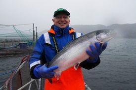 Ansatt Dag Inge Ekrem, holder en stor laks på jobben ved matfiskanlegget til Eide Fjordbruk. Foto: Kjersti Fossåskaret Eltoft