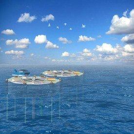 Marine Harvest vil bygge verdens største smultring. Foto: ØDP.