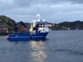 Atle legger ut på arbeidsstokt tidlig hver dag, og synes det er topp å være skipper på egen skute, samt være ute i en aktiv jobb. Foto: Atle Dåvøy.