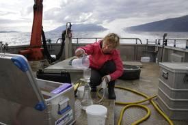 Det er tatt vannprøver, prøver av bunndyr og sedimenter jevnlig i tre år. Nå er prosjektet rundt undersøkelse av fjordene i Nordland utvidet for ytterligere tre år.