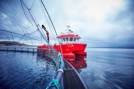 Espnestaren lokalitetsbilde, med arbeidsbåt Anne Kristin. Foto: Måsøval Fiskeoppdrett.