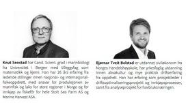 Artikkelforfattere er Knut Senstad og Bjørnar Tveit Bolstad fra Inventura. Klikk for større.