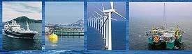 Prosjektene som får støtte ved årets tildeling fra Forskningsrådets havteknologisatsing, er rettet mot teknologibehov i flere av havnæringene.