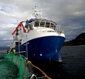 MS Skarsfjord. Foto: ShellSea.