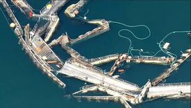 Cooke's recently-acquired Cypress Island No.2 farm in Washington state collapsed in August.