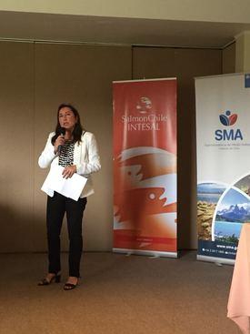 Claudia Pastore, jefa de Fiscalización (S) de la SMA.