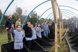 Proyecto de Eco Invernaderos. Foto: Blumar