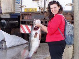 Professor Berta Levavi-Sivan of Hebrew University developed the technology.