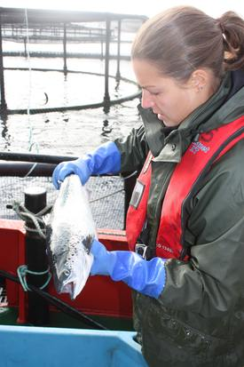 Ola Wands, fish health specialist, Cook Aquaculture Scotland. Image: Rob Fletcher.