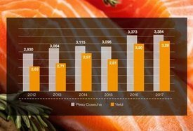 Evolución peso cosecha y yield (Kg/Smolt) (valores peso planta). Fuente: Skretting.