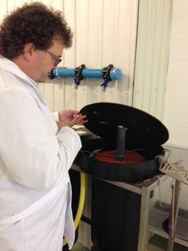 Jonas Jonasson, administrerende direktør i Stofnfiskur studerer triploid rogn i inkubatorer. Foto: Salmobreed.