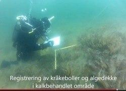 http://www.imr.no/nyhetsarkiv/2013/september/kalk_skal_redde_porsangerfjorden/nb-no