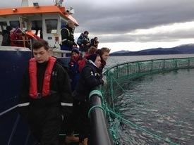 Marine Harvest ga elevene en full omvisning. Foto: Fisk OK