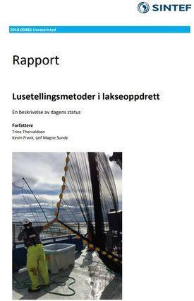 Skjermdump av SINTEF sin nye rapport.