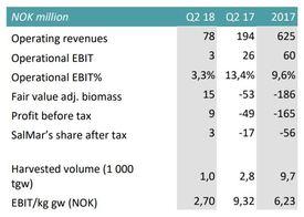 Arnarlax results. Table: SalMar