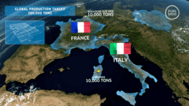 Pure Salmon will choose between Boulogne and Sardinia to site a 10,000-tonne RAS facility. Click to enlarge. Image: Pure Salmon.