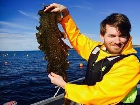 Daglig leder Jon Funderud ute i felten. Foto: Seaweed Energy Solutions AS.