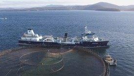 «Ronja Storm» blir verdens største brønnbåt