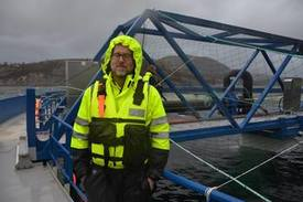 Steingrim Holm, director del proyecto. Foto: Ole Andreas.