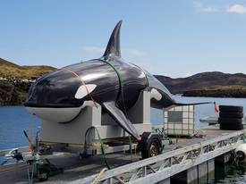 The fibreglass orca is readied for deployment at Loch Erisort. Click on image to enlarge. Photo: Mowi.