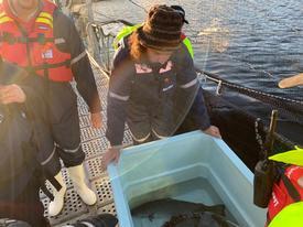 El chef Carlo von Mühlenbrock visitando un centro de cultivo de salmón de Mowi. Foto: Mowi.