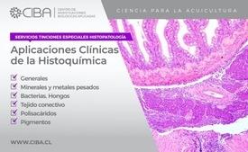 Servicios histopatológicos de CIBA (hacer click para agrandar la imagen) Fuente: CIBA.