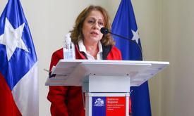 Seremi de Salud Magallanes, Mariela Rojas. Foto: Seremi de Salud.