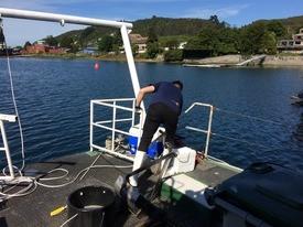 La investigadora busca incorporar el índice biótico AMBI (Azti Marine Biotic Index) en las evaluaciones ambientales. Foto: UACh