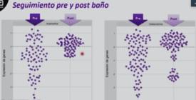 Presión selectiva de los antiparasitarios sobre las poblaciones de Caligus pre y post baño. Imagen: Presentación Luciano Rivera.