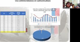 El Indice de Consumo de Antimicrobianos subió levemente de 0,034 en 2019 a 0,035 en el año 2020 (hacer click en la imagen para agrandar). Foto: Presentación Marcela Lara.