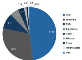 Distribución de mortalidad según enfermedad en salmón Atlántico. Fuente: Sernapesca.
