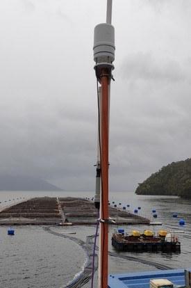 Estación meterológica instalada en un centro de cultivo. Foto: 3se.