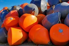 Compañía desarrollará una estrategia de gestión de residuos. Foto: Archivo Salmonexpert.