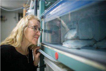 Brit Hjeltnes, fagdirektør ved Veterinærinstituttet sier ILA-viruset har nå spredt seg til flere ulike deler av Norge, noe som hun mener er bekymringsfullt. Foto: Eivind Senneset.