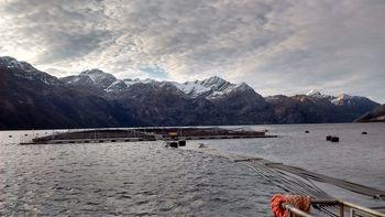 Centro de cultivo de salmón en Magallanes. Foto: Archivo Salmonexpert.