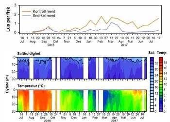 Figura 2. Temperatura, salinidad (ambas como funciones de profundidad) y número promedio de piojos de salmón sésiles por pez durante todo el experimento. Haga clic para expandir la imagen.