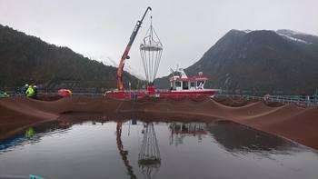 Kuppel med lodd, senkes ned i merd. Foto: Havforskningsinstituttet.