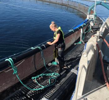 Aina Skarsvåg fikk øyene opp for havbruksnæringen da hun var på et settefiskanlegg da hun var bare 13 år, og siden den gang har hun utdannet seg innen havbruk og fått fagbrev i akvakultur. Foto: Marine Harvest/privat.