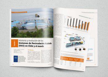 Primer capítulo de la sección Aprendiendo Acuicultura - RAS en revista Salmonexpert.