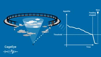CageEye monitors fish behaviour to optimise feeding. Click on image to enlarge.