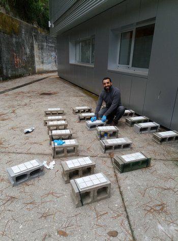 Preparación de experimentos de campo.