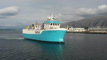 Fartøyet «BB Clean Ocean» sin største og lengste fisketransport så langt var på hele 200 000 rognkjeks over 1000 nautiske mil. Klikk for større bilde. Foto: Henry Thomassen.