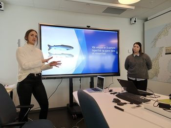 SeaSort sin store visjon er å gjøre taperfisk om til vinnerfisk. Klikk for større bilde. Foto: SeaSort SB