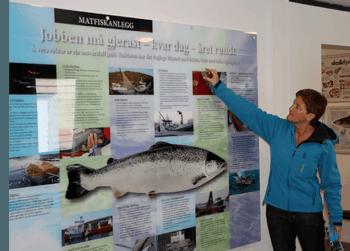 Anne Karin Vassbotten, leder for Steinvik FiskefarmVisningssenter, gleder seg til å åpne dørene for besøkende niende gang på rad. Foto: Steinvik FiskefarmVisningssenter.