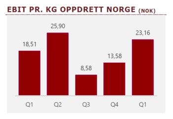 Utvikling av EBIT/kg for Midt-Norsk Havbruk.