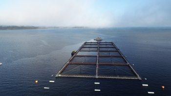 Centro de cultivo de salmón. Foto: Archivo Salmonexpert.