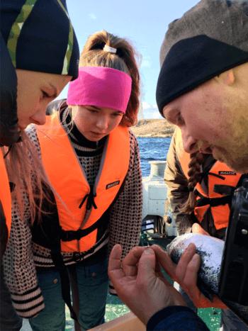 Driftsleder Vegard Valø teller lus med jentene. Foto: OFNT