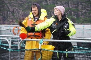 Wester Ross farm technician Matt Ross and BBC presenter Cherry Healey feeding salmon at Ardmair. Click on image to enlarge. Photo: Barbora Gaborova / Wester Ross Fisheries Ltd.